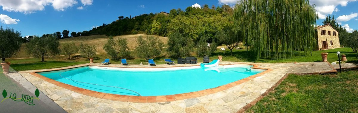 pool La ripa holidays farm tuscany siena